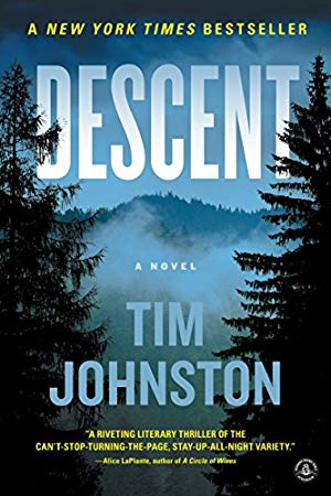 Descent by Tim Johnston
